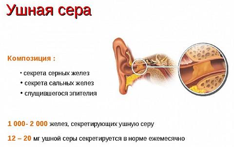 Чешется внутри уха причины